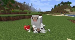 RedCraft: Láskyplná ovečka